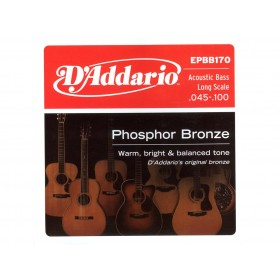 D'addario Ac. Bass Phosphor Bronze 045-100